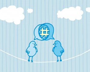Birds sharing and tweeting / Social media dialog