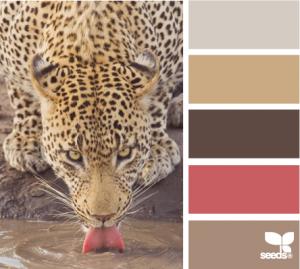 ColorLap-Designs-seeds.com